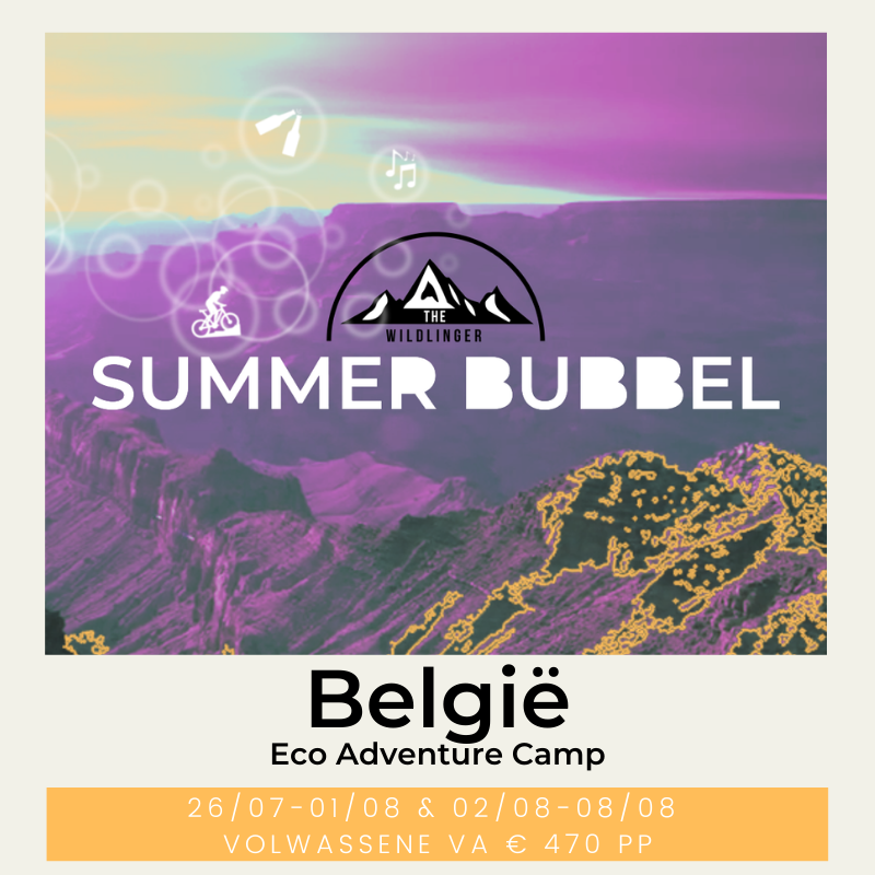 summer bubbel eco adventure camp belgië the wildlinger