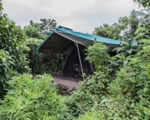 -Virunga_Safari142 (2)
