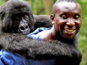 congo-safari-gorilla-orphanage-andre