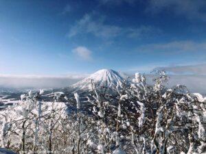 Freeride Japan Hokkaido The Wildlinger
